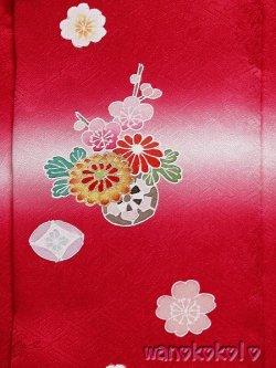 画像2: 七五三着物 国産正絹三歳用被布コート 菱 赤系/花車・桜柄 HISHI-2